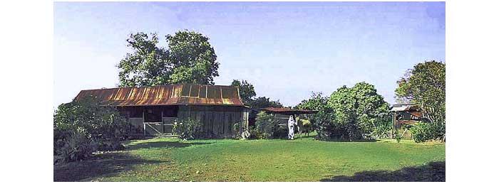 800px-Panorama_of_the_farmhouse_at_the_Kona_Historical_Society's_Kona_Coffee_Living_History_Farm