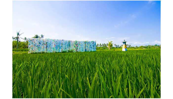 1.-GFIVE-plastic-rice-fields