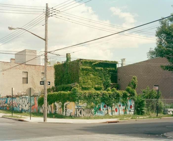 Green Mystery House (2011) karya Jade Doskow (sumber gambar:  huffingtonpost.com)