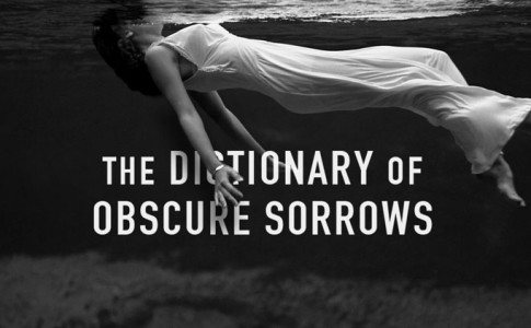 the-dictionary-of-obscure-sorrow