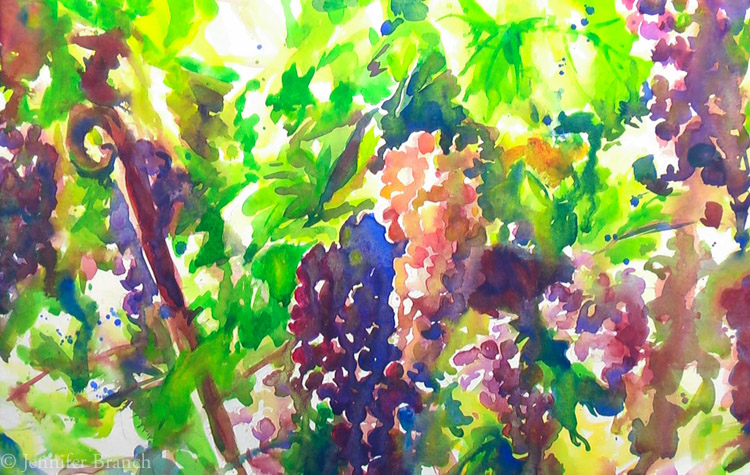 Grapevines-6