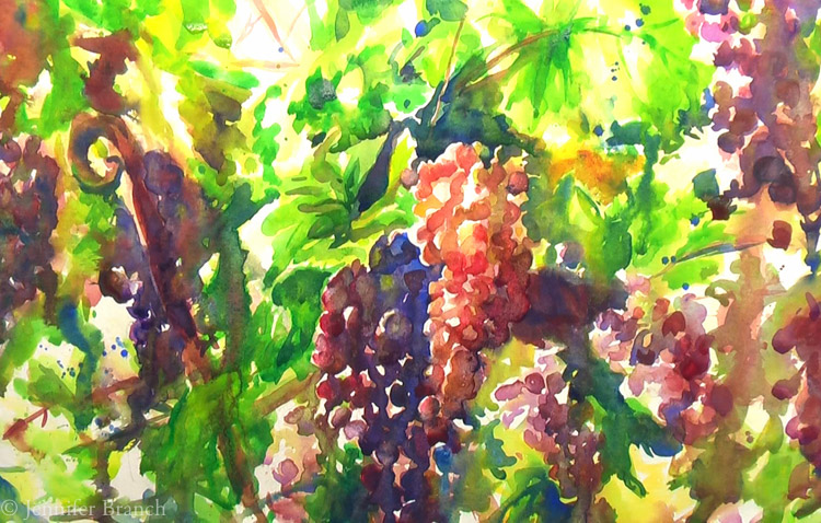 Grapevines-7
