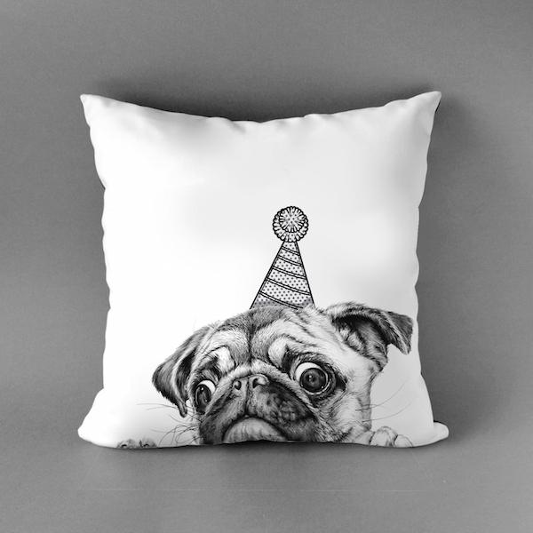 cushion (4)