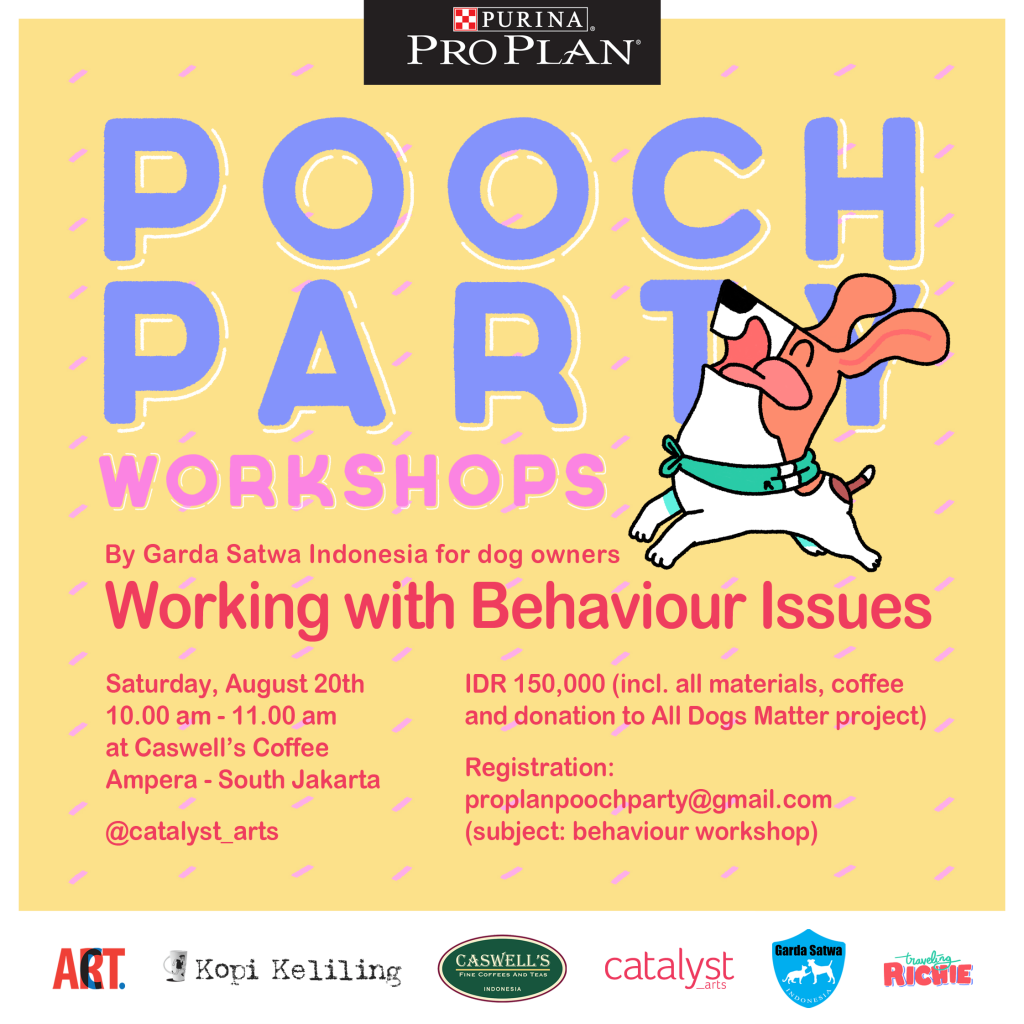 Pooch-Party_Workshop_ig_behaviour
